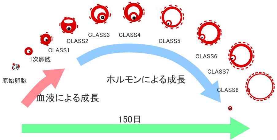 150919-0028