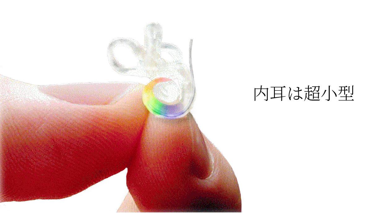 内耳は、超小型の精密機械